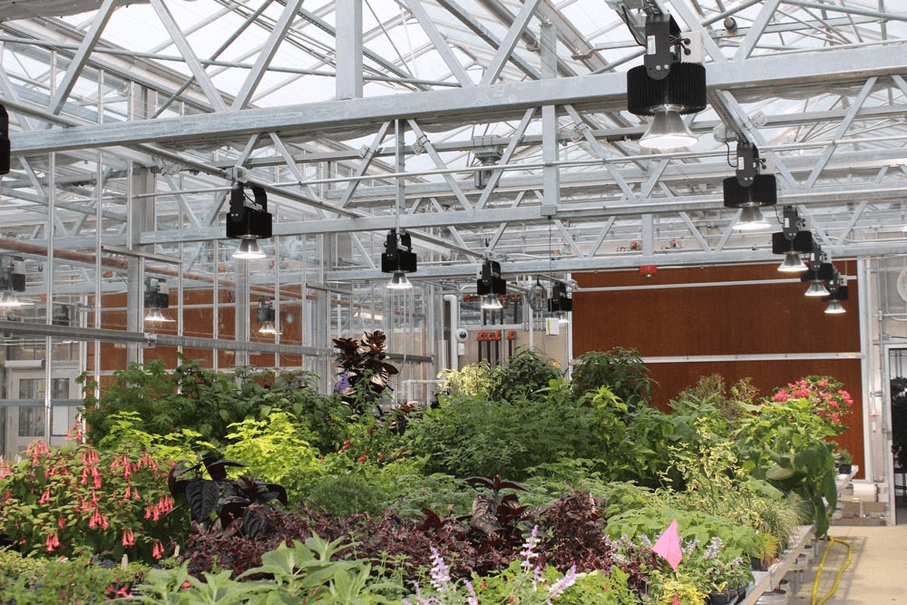 lumiere interieur jardinage